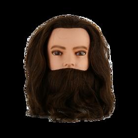 Tête d'Apprentissage Karl With Beard
